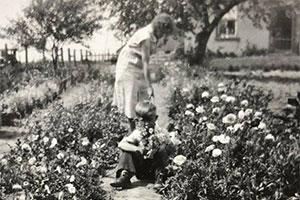 Billard Blossom